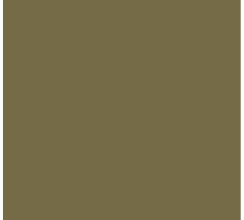Dropoutz Logo Brown